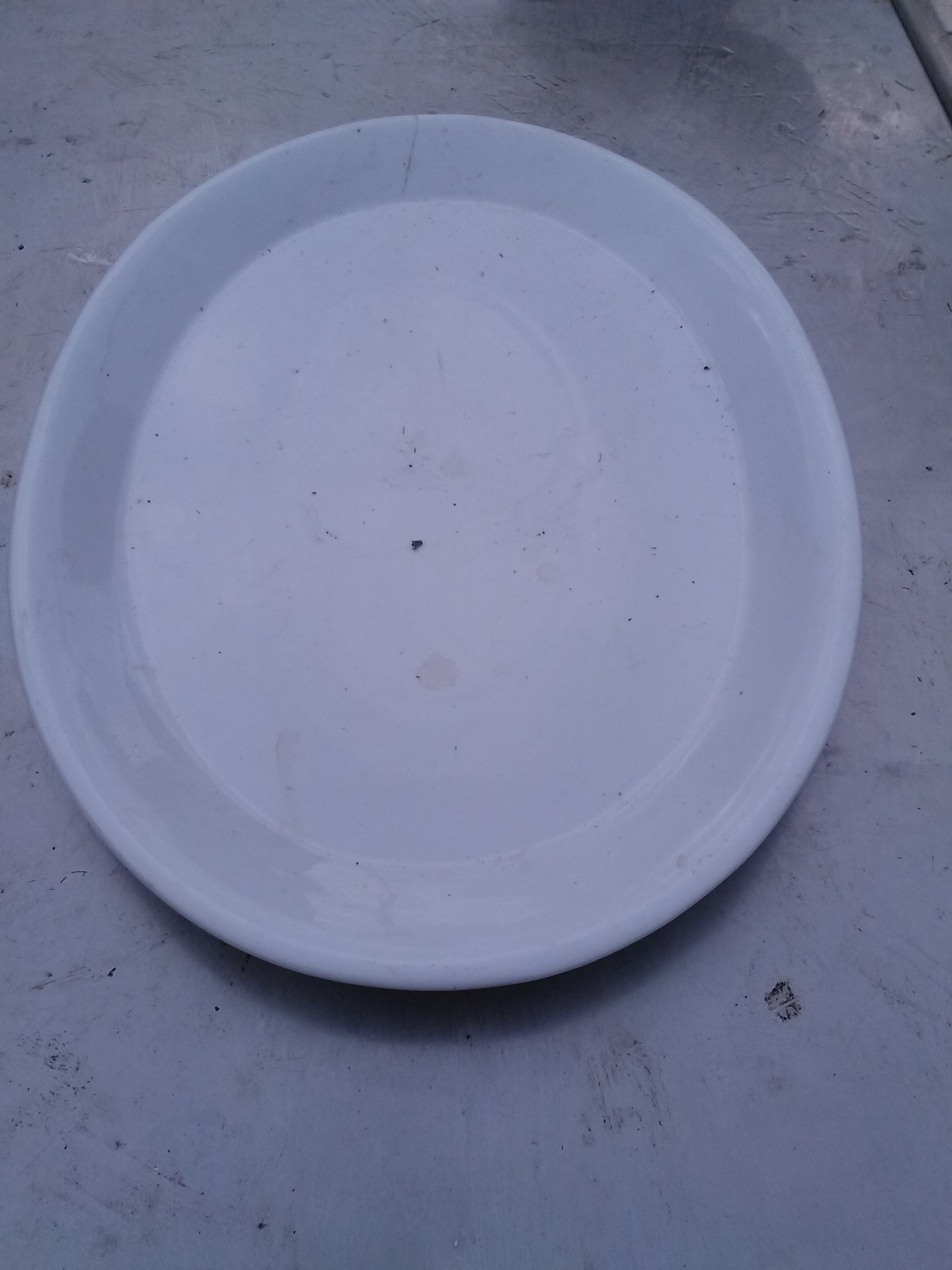 Oval Plate White